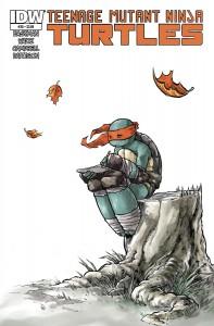 teenage mutant ninja turtles 30